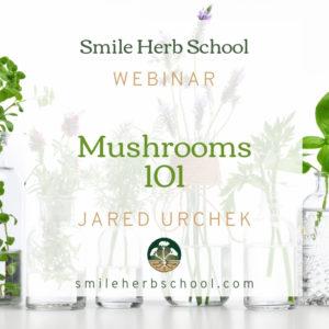 Webinars Shop - Smile Herb School