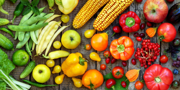 FREE Webinar: Organics 101: 5 Things Everyone Should Know About Organic  Foods - Colleen O'Neil Mulvihill - Smile Herb School